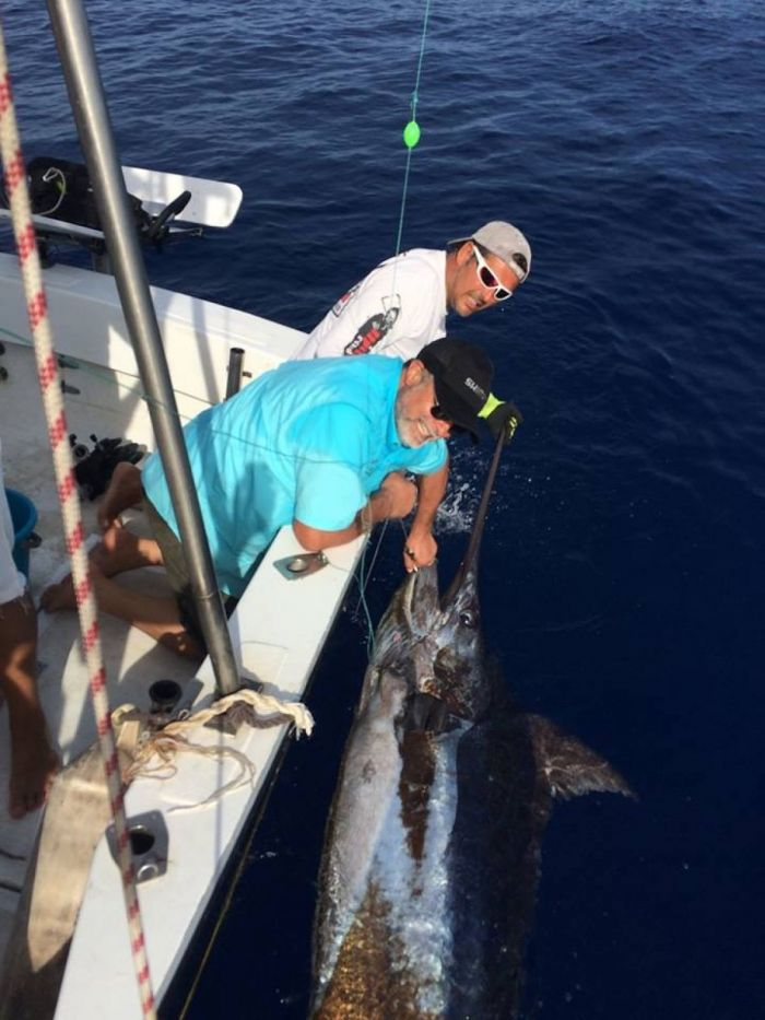 Blue Marlin fishing in Portugal