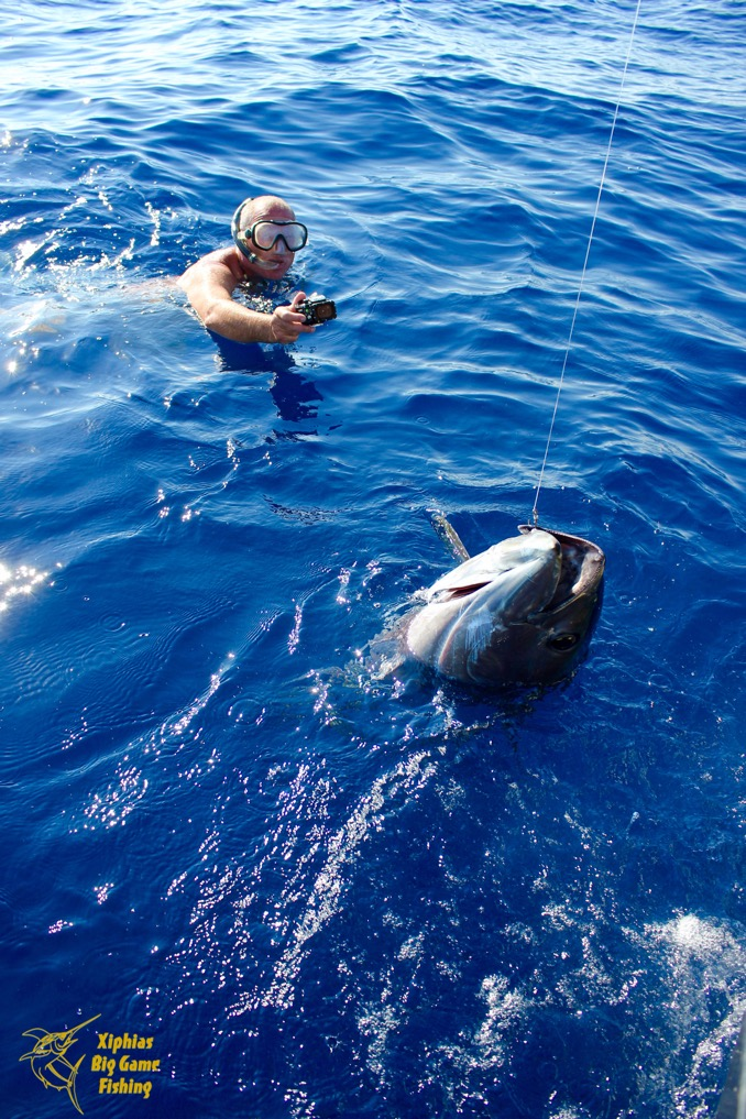 extreme big game fishing portugal rates